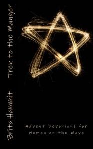 Trek to the Manger by Brita Hammit