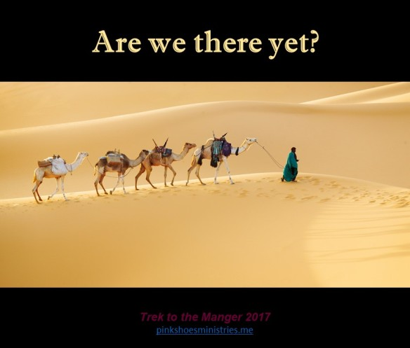 Trek to the Manger 27